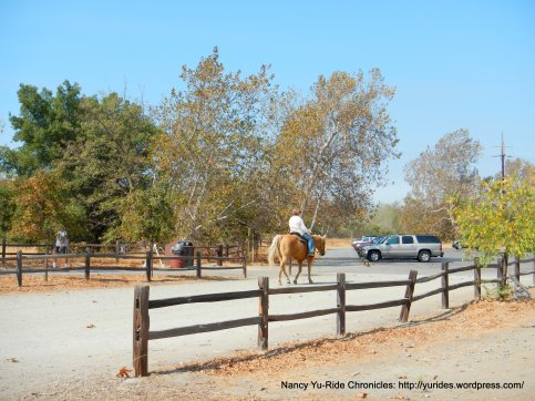 equestrian trails
