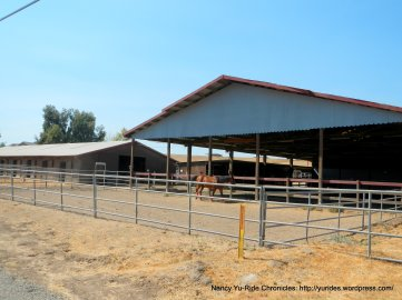 tesla rd horse ranch