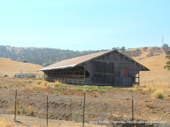 cattle barn