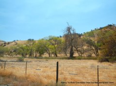 corral hollow landscape
