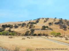 corral hollow landscape