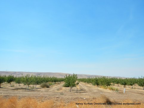 corral hollow orchard