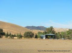 reinstein ranch