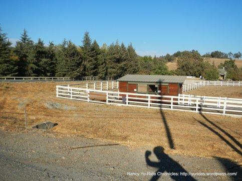 camino tassajara stables