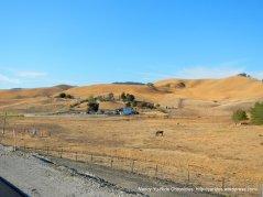 camino tassajara ranch