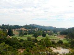 club meadow golf course