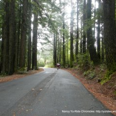 to bolinas ridge