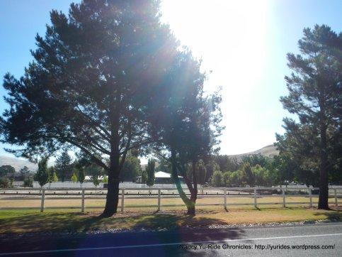 tassajara horse ranch
