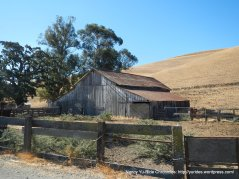 manning rd-old barn