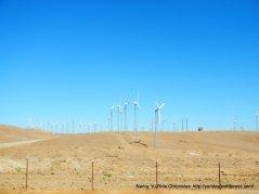 altamont pass windfarm