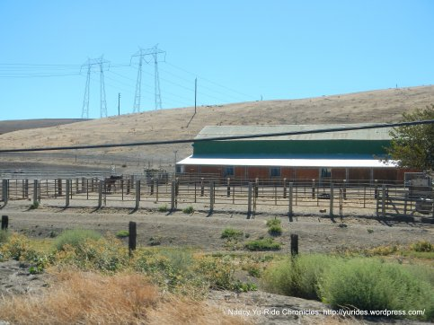 grant line horse ranch