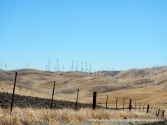 patterson pass windfarm