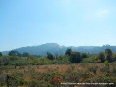 CA-116 E- meadow