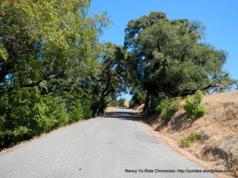 steep climb hauser bridge rd