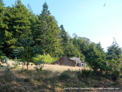 CA-1 old barn