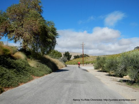 winery rd