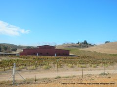 CA-46 E winery