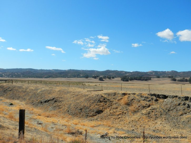 cholame rd landscape
