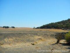 parkfield landscape