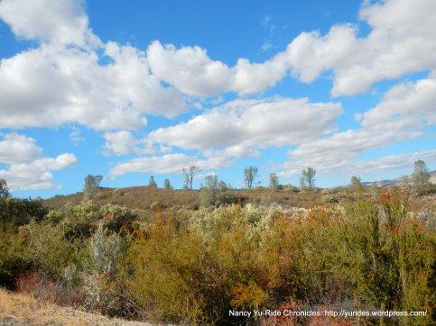 cholame hills landscape