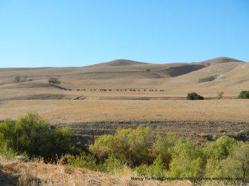 golden valley