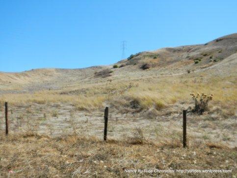 moraga rd hills