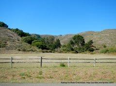 santos meadow