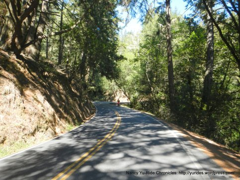 climb muir woods rd