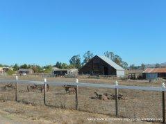 adobe rd ranch