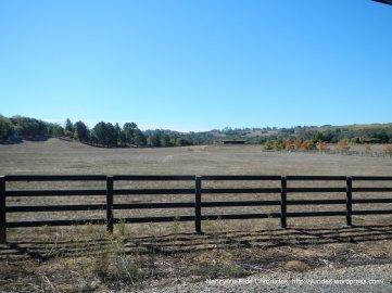 bennett valley meadow
