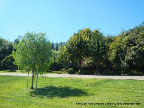 green lawns