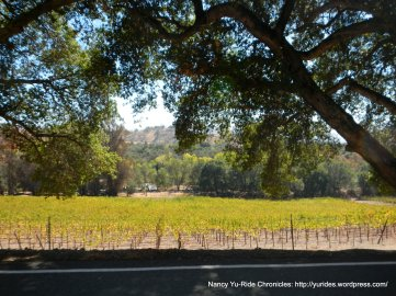 sunol valley vineyards