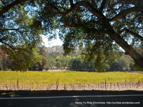 sunol valley vineyards