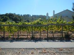 alhambra valley rd vines