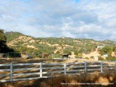 horse ranchvalley