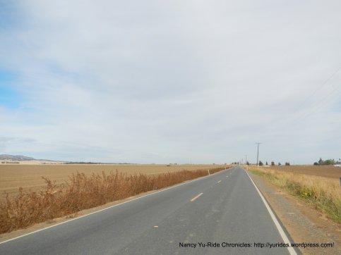 Road 85