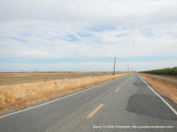Road 14