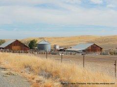 Road 14 ranch