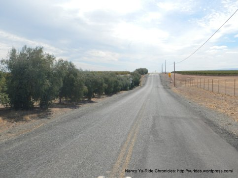 road 15B