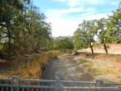 cache creek nature preserve
