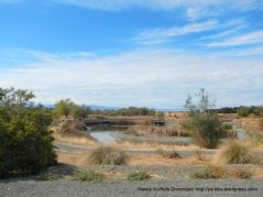 cache creek nature preserve