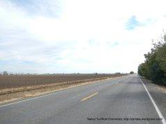 road 98