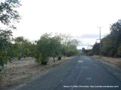 multi-use path to pena adobe park
