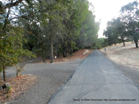 multi-use path to pena adobe park