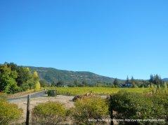 olive hill ln