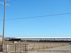 N thornton rd ranch