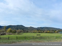 yountville golfcourse