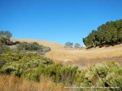 santa lucia range landscape