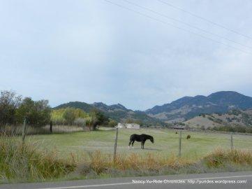 tubbs ln ranch