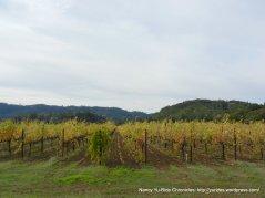 bennett ln vineyards